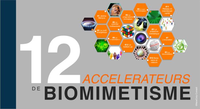 12 accélérateurs de biomimétisme